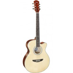 Saison D-200 民謠吉他 D200木吉他 40吋 附贈提袋