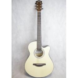 Saison D-250 民謠吉他 D250木吉他