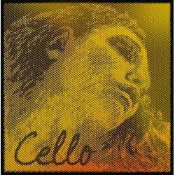 PIRASTRO Evah Pirazzi Gold Cello 德國金美人鎢鋼大提琴套弦-4/4專用