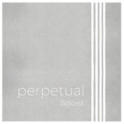 PIRASTRO Perpetual Soloist 德國大提琴套弦-4/4專用