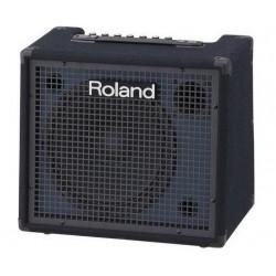 ROLAND KC-200 樂蘭 KC200 鍵盤音箱 電子琴/電鋼琴 專用